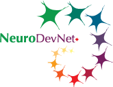 NeuroDevNet-LOGO_screen